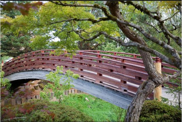 Grassroots Japanese Garden in Gresham