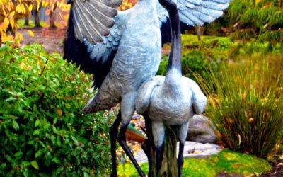 Dancing Cranes Join Ebetsu Plaza